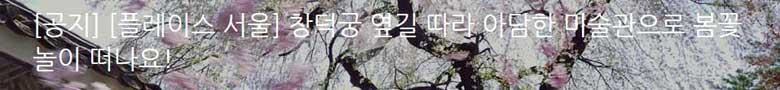 [플레이스 서울] 창덕궁 옆길 따라 아담한 미술관으로 봄꽃놀이 떠나요!