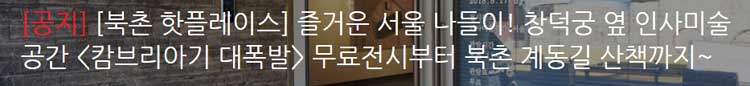[북촌 핫플레이스] 즐거운 서울 나들이! 창덕궁 옆 인사미술공간 [캄브리아기 대폭발] 무료전시부터 북촌 계동길 산책까지~